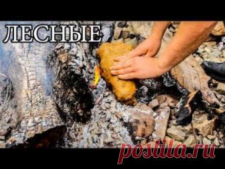 Дикая кухня - РЫБА В ГЛИНЕ | Steamed Fish In Clay