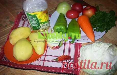 Вкусные щи из свежей капусты: пошаговый рецепт с фото