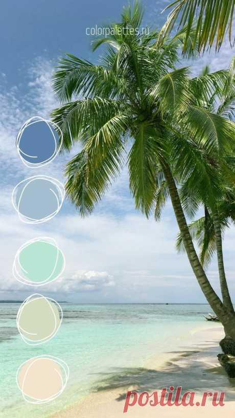 Нежное сочетание пастельных оттенков синего, бирюзового, зеленого и бежевого. #интерьер #дизайн #цветовоесочетание #пастель #палитрацвета #кодцвета #пляж #море #песок #вдохновениецветом…