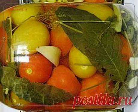 Помидоры на зиму | Рецепты вкусно
