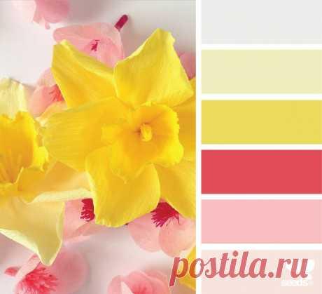 Красивое сочетание теплых цветов — Полезные советы