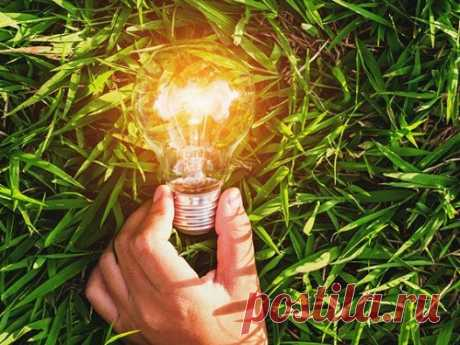 Лучшие травы для повышения энергетики весной Весной многим нехватает энергии, иразбудить ееможно благодаря использованию трав. Растения-энергетики помогут приободриться, почувствовать прилив сил инасладиться отличным настроением.