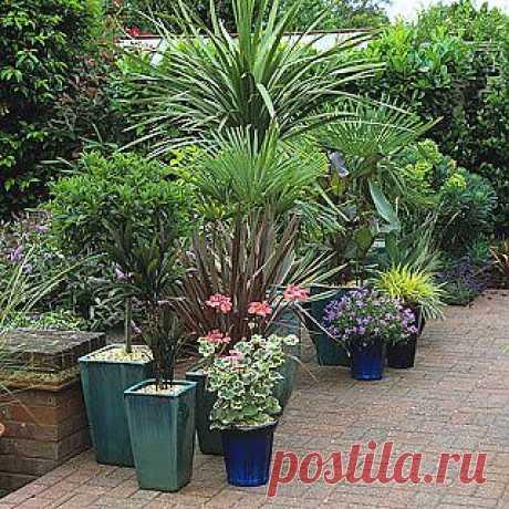 Кашпо для садовых растений
