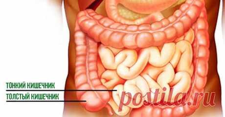 Эта мощная смесь устранит все токсины и всех паразитов из вашего кишечника  Удивительно эффективный рецепт для очищения организма, который вы можете попробовать прямо сейчас и получить невероятные результаты! В толстой кишке со временем происходит накопление токсинов.Пищева…