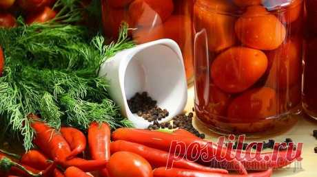 Мамины помидоры на зиму, без уксуса. Так вкусно, что выпьешь даже рассол!