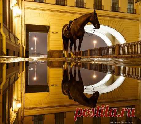 Дворцовая площадь после дождя. Фото: Александр Шереметев