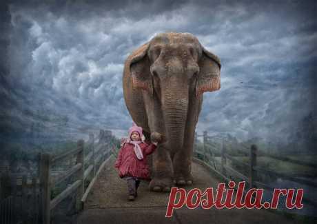 Слон – символ и тотем | ЗНАКИ и СИМВОЛЫ