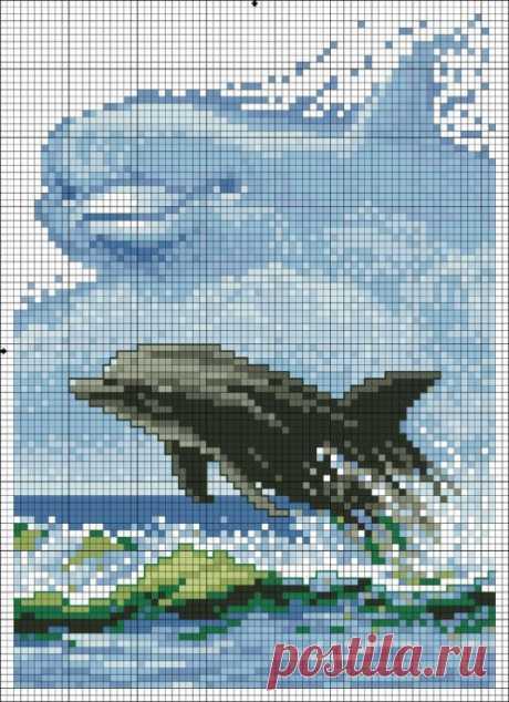 (9) Gallery.ru / Фото #2 - golfinho - denise10