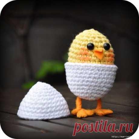Желтый цыплёнок в яйце