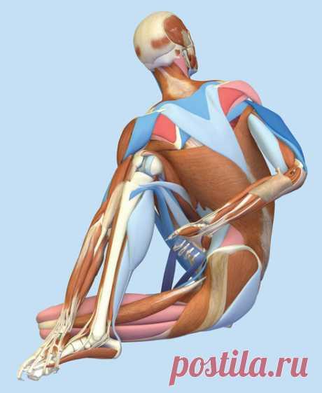 Гимнастика фараонов: Упражнения, которые стоит делать сразу после пробуждения | ECONET.ru | Яндекс Дзен