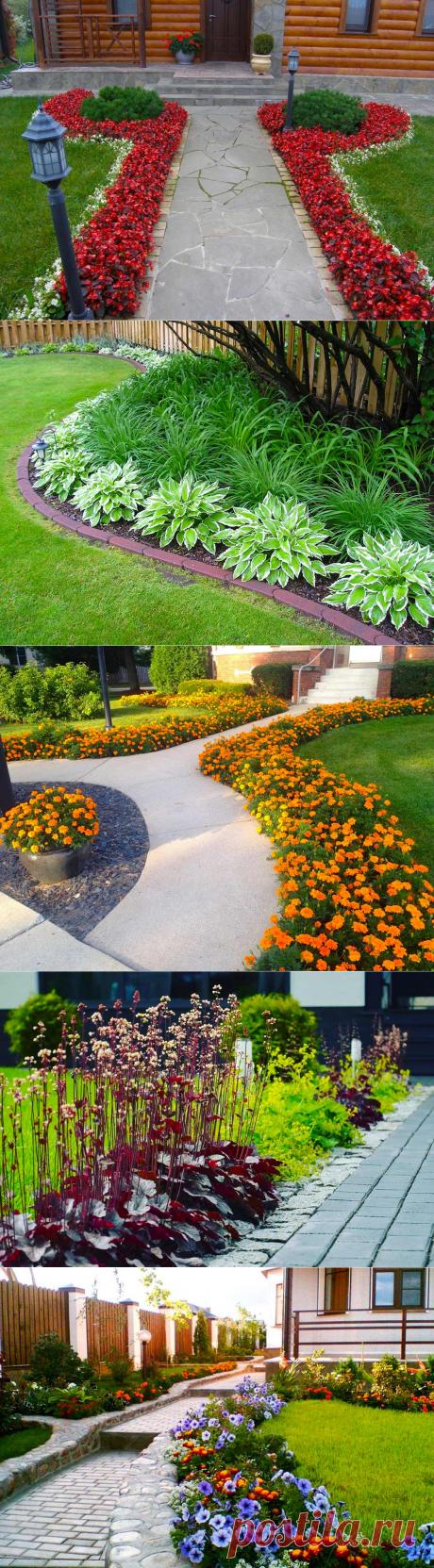 Цветы и растения для бордюра вдоль дорожек