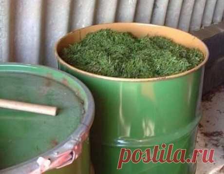4 вида подкормки для вашего огорода   1. Готовится настой. В 200-литровую емкость (бочку) кладется:  - лопата древесной или травяной золы;  - полведра навоза или помета;  Показать полностью…