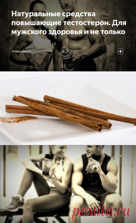Натуральные средства повышающие тестостерон. Для мужского здоровья и не только | fitnechannel | Яндекс Дзен