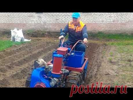 Моя технология посадки картошки