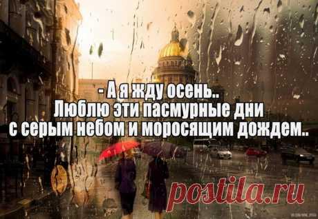 Санкт-Петербург (Питер) Live