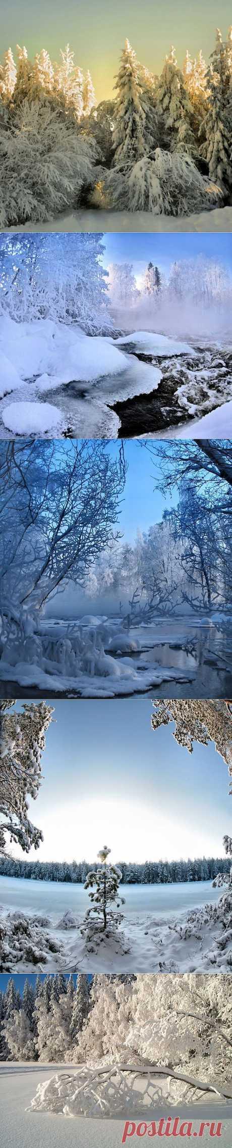 » Зимние пейзажи Это интересно!