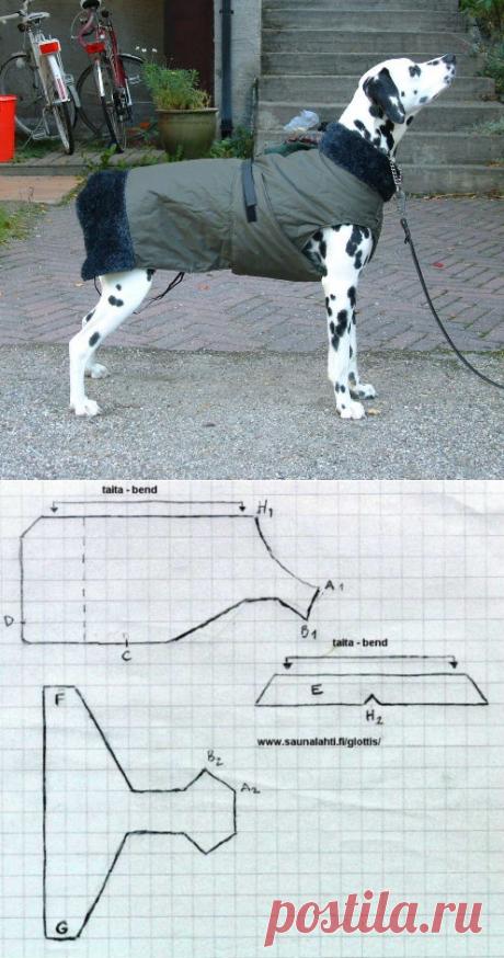 Тёплая попона-пальто для собаки выкройка / Для питомцев / ВТОРАЯ УЛИЦА