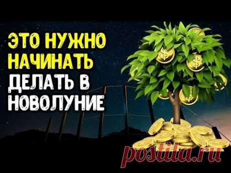 Этот ритуал нужно начинать выполнять в Новолуние 🌒 Лунная дорожка для привлечения денег | Эзотерика
