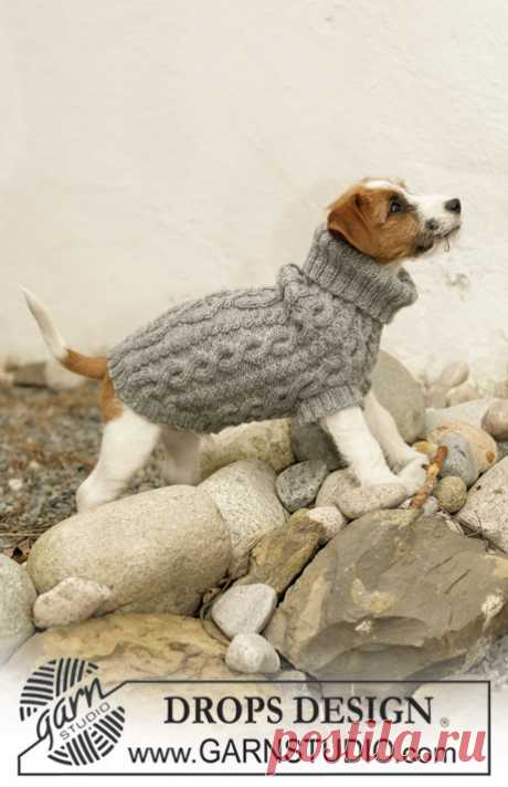 "The Lookout - Knitted DROPS dog coat in ""Karisma"" with cable pattern. - Free pattern by DROPS Design"