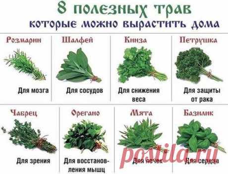 (82) Рецепты домашних блюд
