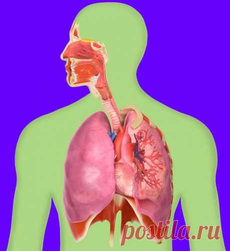 Учимся правильно дышать / Будьте здоровы