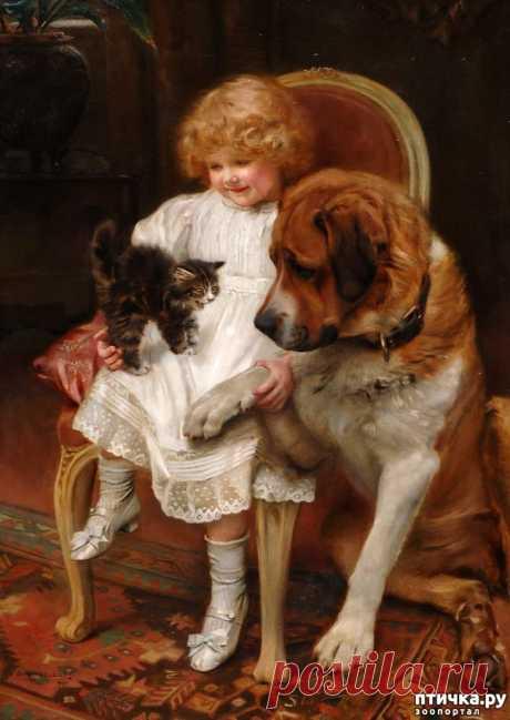 """Артур Джон Элсли: сентиментальная викторианская живопись — обсуждение в группе """"Собаки""""   Птичка.ру"""