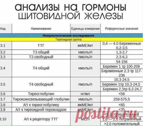 Нормы анализов на гормоны щитовидной железы