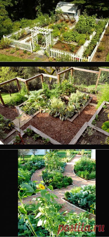 Красивый огород: привлекательность и удобство!