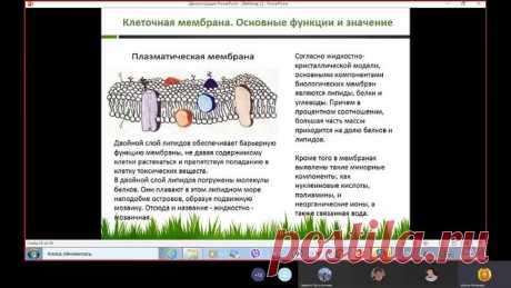Клеточные мембраны и гидроплазма Инюшина