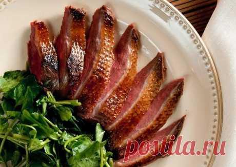Как приготовить дикую утку: рецепты вкусных блюд с фото