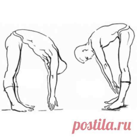 Do 10 exercises of the academician Amosov and you will be always healthy!