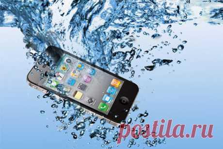 С кем не бывает… Как реанимировать упавший в воду мобильный. — Полезные советы