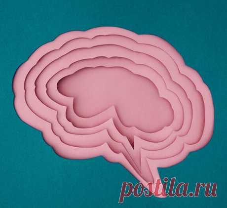 3 упражнения для развития интеллекта и памяти Профессор и доктор медицины Рюта Кавашима в книге «Тренируем мозг» предлагает простые и эффективные упражнения для тренировки мозга. Эта тетрадь содержит примеры, знакомые всем со школы: на сложение, вычитание, умножение и деление. Развить память и интеллект проще, чем кажется! Для этого нужно всего пять минут в день. Что под обложкой? Смотрим!