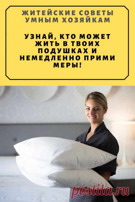 Узнай, кто может жить в твоих подушках и немедленно прими меры! Это должен знать каждый! | Житейские Советы