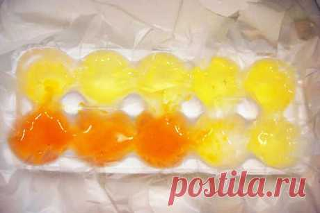 Почему не нужно выбрасывать лотки от куриных яиц и что в них можно замораживать