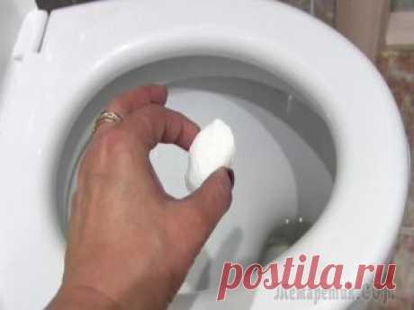 Как сделать шипучку для унитаза Как сделать шипучку для унитаза, которая уничтожает все бактерии и безвредна для человека. Чистота и гигиена в туалете за копейки! Я предлагаю вам очень интересное решение, сделать шипучку для унитаза...