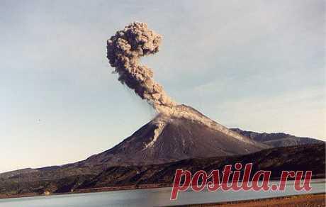 Шивелуч выбросил новый столб пепла на высоту до 8 км :: Новости :: ТВ Центр - Официальный сайт телекомпании