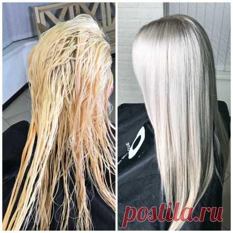 Одна процедура позволит равномерно окрасить даже самые тонкие волосы. Протекторы для восстановления структуры волос | Женя Жульева (КОЛОРИСТИКА ВОЛОС) | Яндекс Дзен