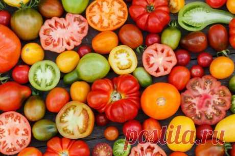 Секрет хорошего урожая томатов — что обязательно нужно сделать с ними в июле | Азбука огородника | Яндекс Дзен