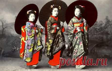 """""""Занятого болезнь не берёт!"""" 8 японских мудростей, которые пригодятся и русскому человеку   Счастливая Жизнь   Яндекс Дзен"""