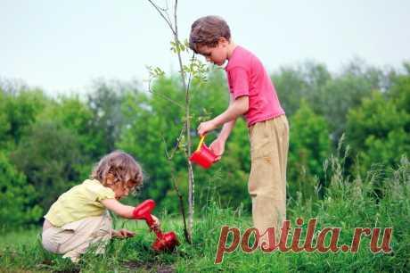 Методы, формы и средства экологического воспитания🌳🌎 #дети #воспитание #экология  #родителям #мамам