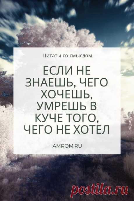 Цитаты со смыслом. Сборник красивых цитат | Журнал Амром