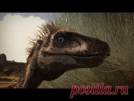 You Think You Know Dinosaurs - Think Again! - YouTube