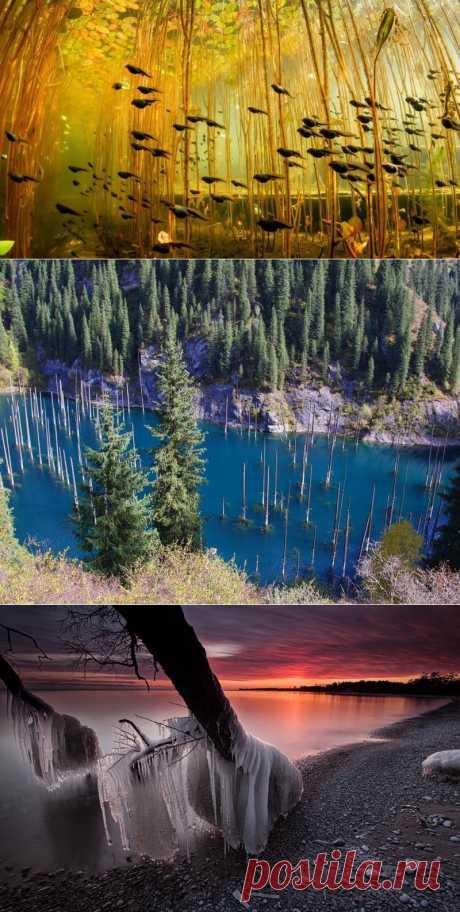 8 удивительных фотографий молодых озер | VeniVidi.ru