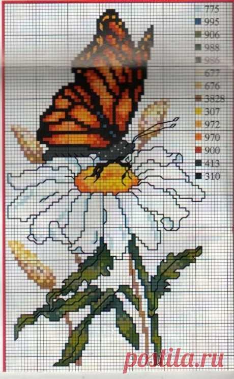 Na cvetke- схемы для вышивки крестом цветов. Бабочка на ромашке. схема для вышивки крестиком.