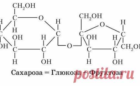 Дисахариды — углеводы, молекулы которых состоят из двух молекул моносахаридов. Имеют приятный сладкий вкус, хорошо растворяются в воде.