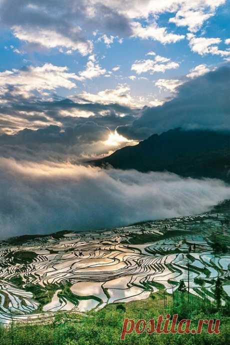 Рисовые террасы ХунхэХани в Китае   Colors.life