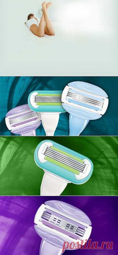 Советы по бритью зимой и другая полезная информация: Gillette Venus