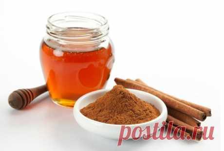 Корица с медом - прицельный удар по жиру — Мегаздоров