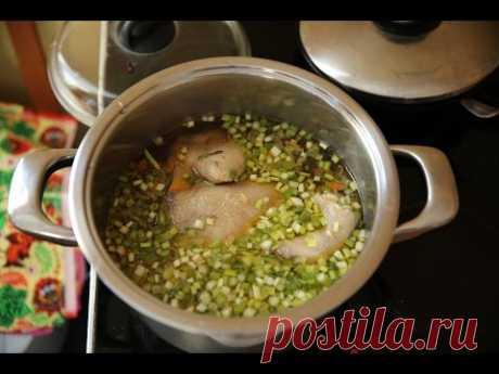 Как сварить куриный суп с вермишелью